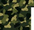 Логотип компании Военная коллегия адвокатов Приморского края